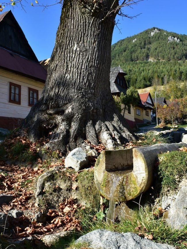Jesenné čaro Vlkolínca